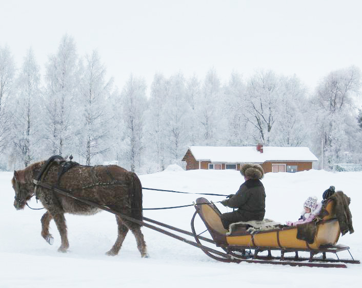 Man being pulled in sled in Finland